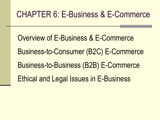 CHAPTER 6: E-Business & E-Commerce