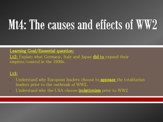 Mt4: The causes and effects of WW2
