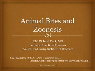 Animal Bites and Zoonosis