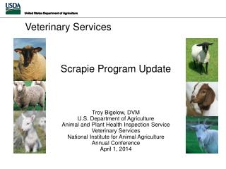 Scrapie Program Update Troy Bigelow, DVM U.S . Department of Agriculture Animal and Plant Health Inspection Service Vete