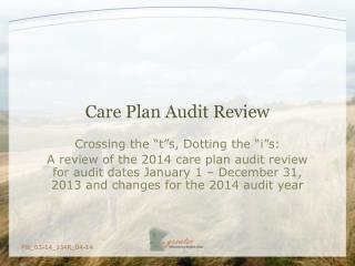Care Plan Audit Review