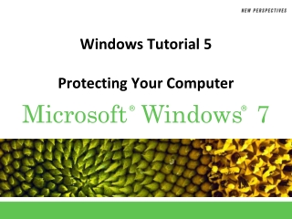 Windows Tutorial 5 Protecting Your Computer