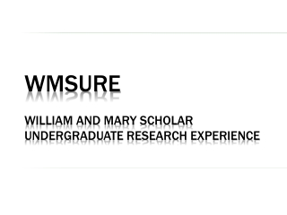 WMSURE William and Mary Scholar Undergraduate Research Experience