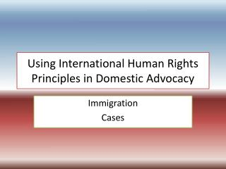 Using International Human Rights Principles in Domestic Advocacy