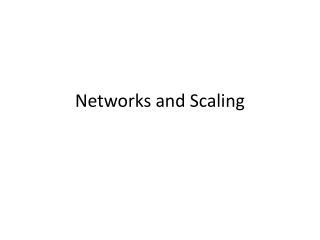 Networks and Scaling