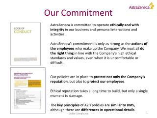 Our Commitment