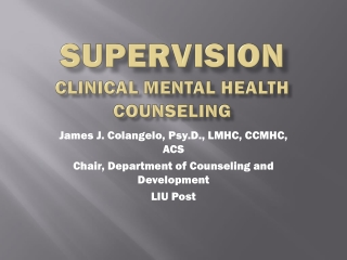 Supervision clinical Mental health counseling