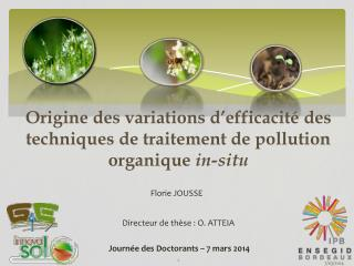 Origine des variations d'efficacité des techniques de traitement de pollution organique  in-situ
