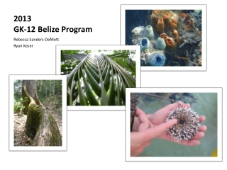 2013 GK-12  Belize  Program