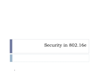 Security in 802.16e