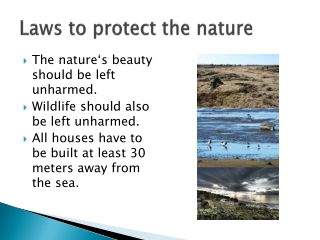 Laws to protect the nature
