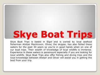 Skye Boat Trips