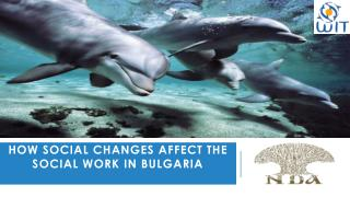How social changes  affect  the social work in Bulgaria