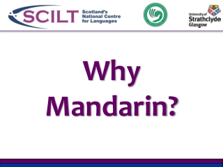 Why Mandarin?