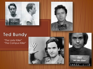 ted bundy his killings on a