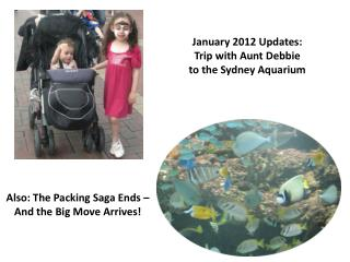 January 2012  Updates:  Trip with Aunt Debbie  to the Sydney Aquarium