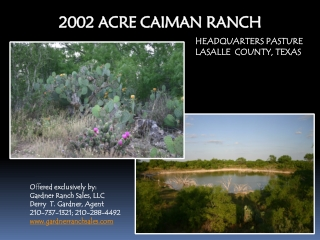 2002 ACRE CAIMAN RANCH