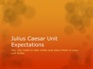 Julius Caesar Unit Expectations