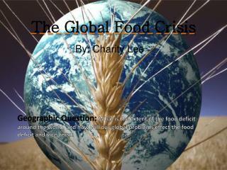 The Global Food Crisis
