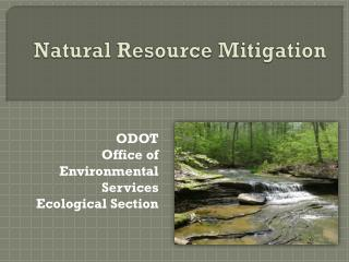 Natural Resource Mitigation