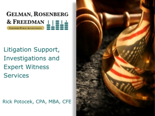 Litigation Support, Investigations and Expert Witness Services
