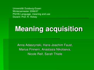 Meaning acquisition