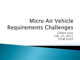 Micro Air Vehicle Requirements Challenges