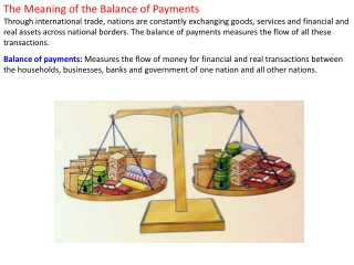 The Meaning of the Balance of Payments