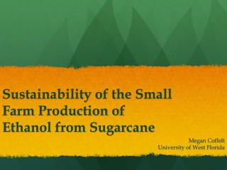 Sustainability of the Small Farm Production of Ethanol from Sugarcane
