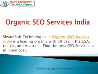 Low Cost Organic SEO Services in India