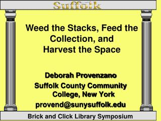 Deborah Provenzano Suffolk County Community College, New York  provend@sunysuffolk.edu