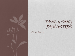 Tang & Song Dynasties