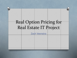 Real Option Pricing for Real Estate IT Project