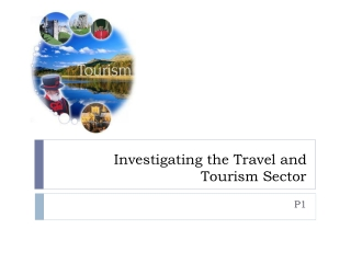 Investigating the Travel and Tourism Sector