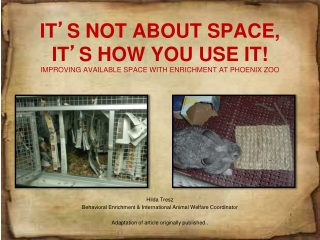 IT ' S NOT ABOUT SPACE, IT ' S HOW YOU USE IT! IMPROVING AVAILABLE SPACE WITH ENRICHMENT AT PHOENIX ZOO