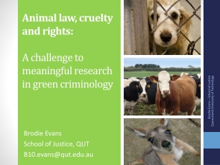 Animal law, cruelty and rights: A challenge to meaningful research in green criminology