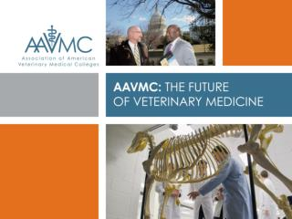 The AAVMC provides leadership for and promotes excellence in academic veterinary medicine  to prepare the veterinary wo