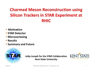 Charmed Meson  Reconstruction using  Silicon Trackers in STAR Experiment at RHIC Motivation  STAR Detector Microvertexi