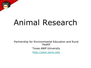 Animal Research