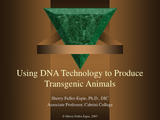 Using DNA Technology to Produce Transgenic Animals