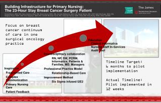 Building Infrastructure for Primary Nursing: The 23-Hour Stay Breast Cancer Surgery Patient