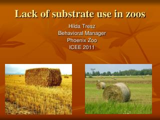 Lack of substrate use in zoos