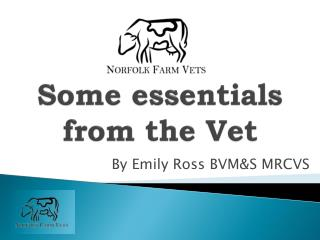 Some  e ssentials  from the Vet