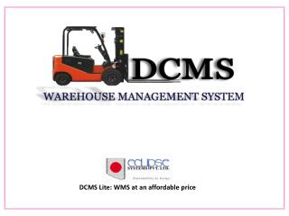 DCMS Lite: WMS at an affordable price