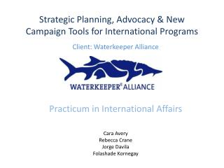 Strategic Planning, Advocacy & New Campaign Tools for International Programs