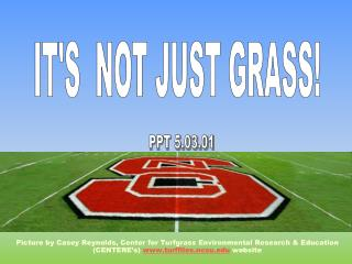 Picture by Casey Reynolds, Center for Turfgrass Environmental Research & Education (CENTERE's)  www.turffiles.ncsu.edu