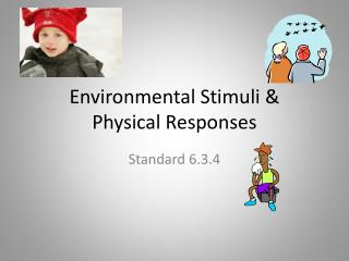 Environmental Stimuli &  Physical Responses
