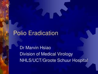 polio eradication