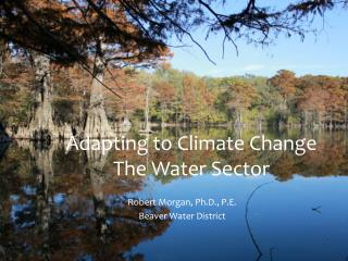 Adapting to Climate Change The Water Sector