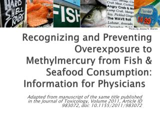 Recognizing and Preventing Overexposure to Methylmercury from Fish & Seafood Consumption: Information for Physicians